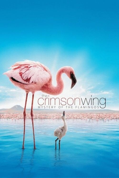 Mira La Película The Crimson Wing: Mystery of the Flamingos Con Subtítulos En Español