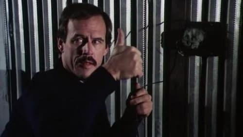 Police Woman 1974 Bluray 720p: Season 1 – Episode Sidewinder