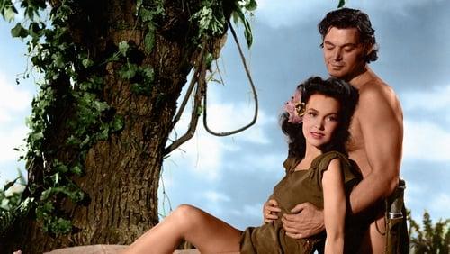 Tarzans Geheimer Schatz 1941 The Movie Database Tmdb