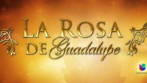 la rosa de guadalupe season 1 free download