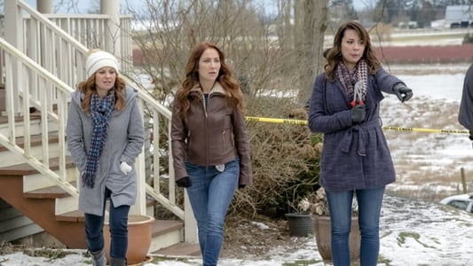 Dead Over Heels An Aurora Teagarden Mystery 2017 The Movie Database Tmdb