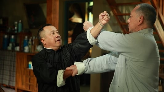 Ip Man - The Final Fight on FREECABLE TV