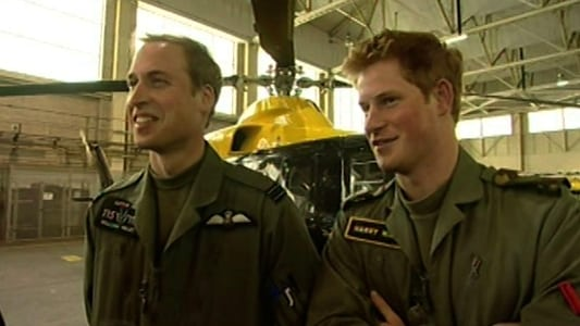 William and Harry: Brothers in Arms on FREECABLE TV