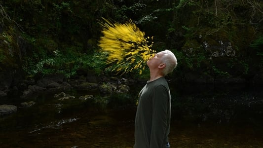 Leaning Into the Wind: Andy Goldsworthy full movie
