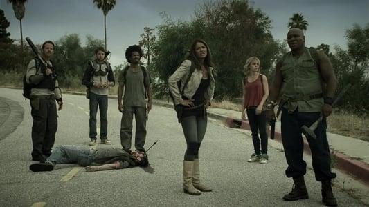 Zombie Apocalypse on FREECABLE TV