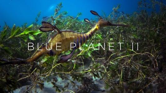 Blue Planet II – Season 1 [End]