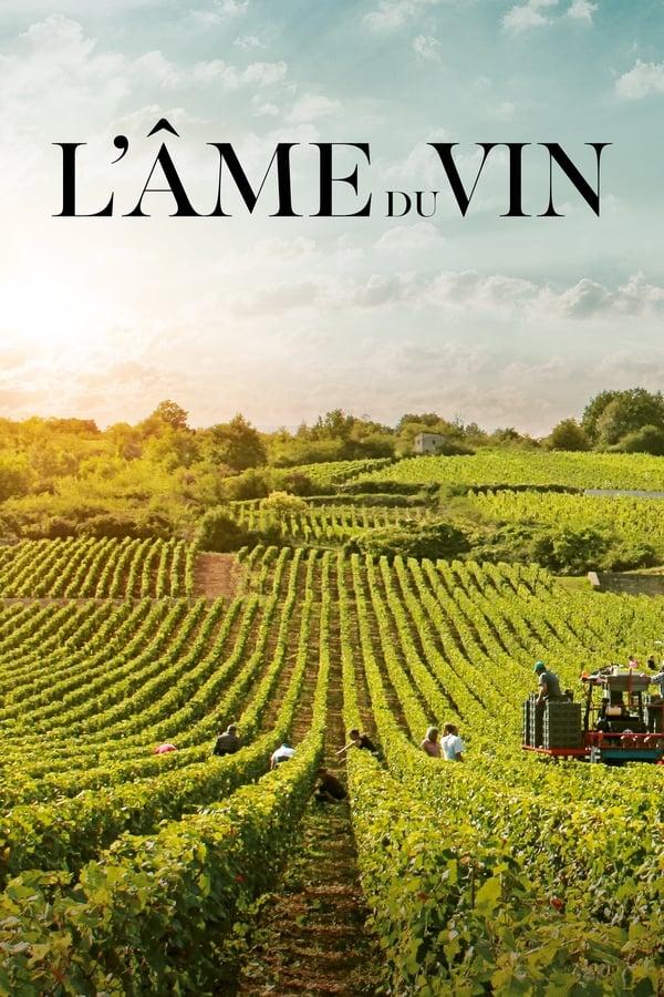L'âme du vin Film Complet en Streaming VF
