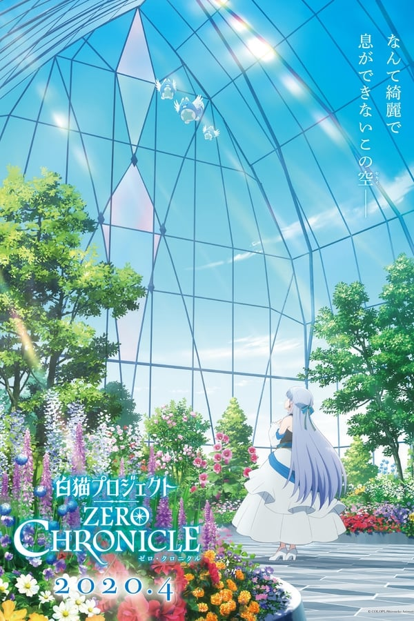 Assistir Shironeko Project: Zero Chronicle Online
