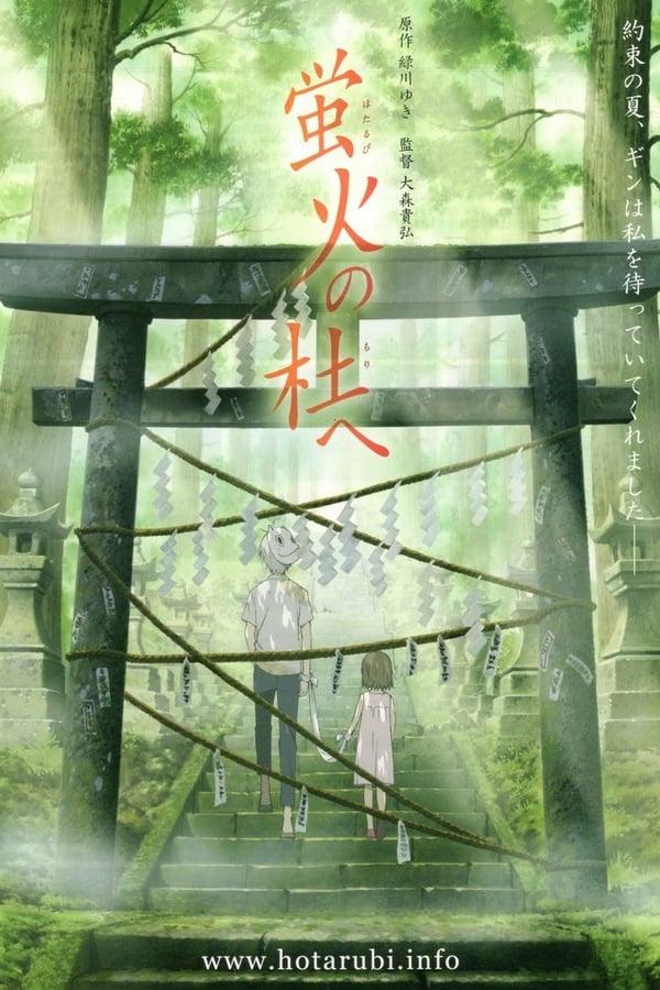 Hotarubi no Mori (Para a Floresta da Luz dos Vagalumes)