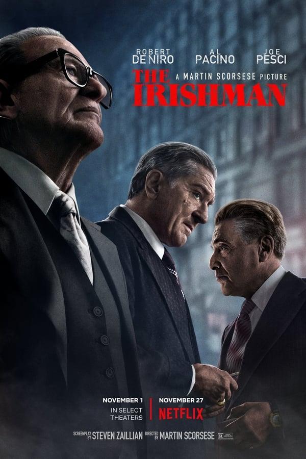 The Irishman (2019) Hindi + English [Dual Audio] 1080p WEB-DL | 720p | 480p WEB-DL | Netflix Exclusive | Download | Watch Online | Direct Links | GDrive