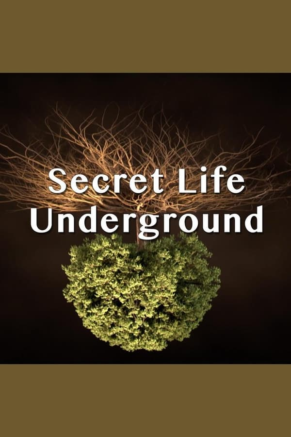 Secret Life Underground