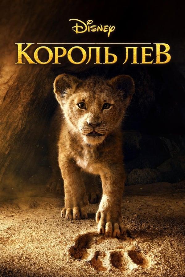 Regele leu - 2019