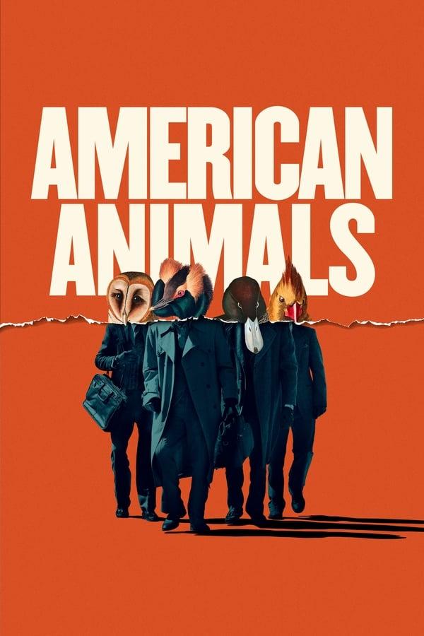 |NL| American Animals (SUB)