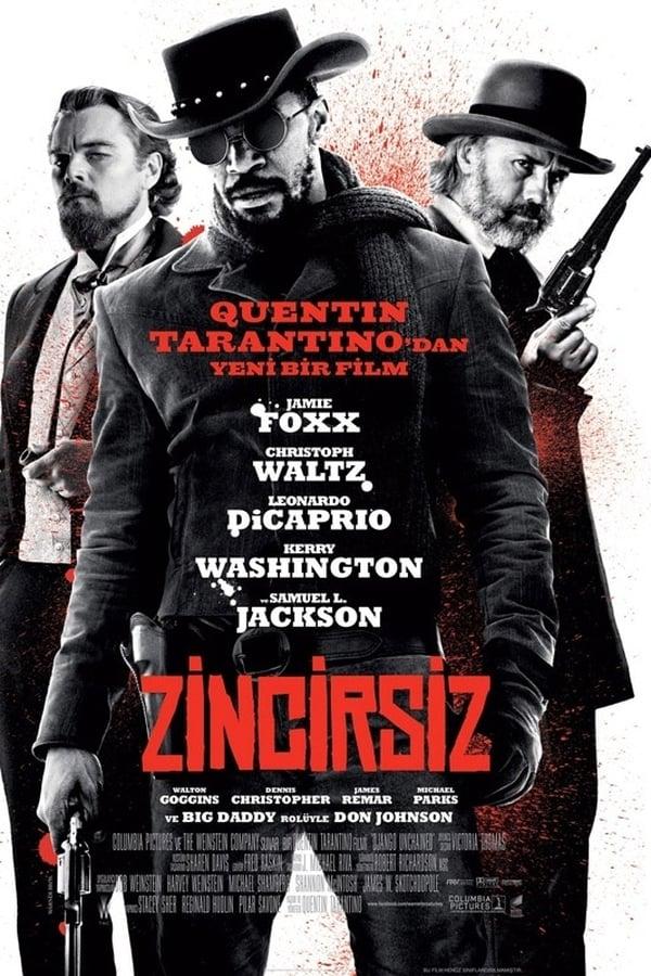 Zincirsiz türkçe dublaj indir - Django Unchained