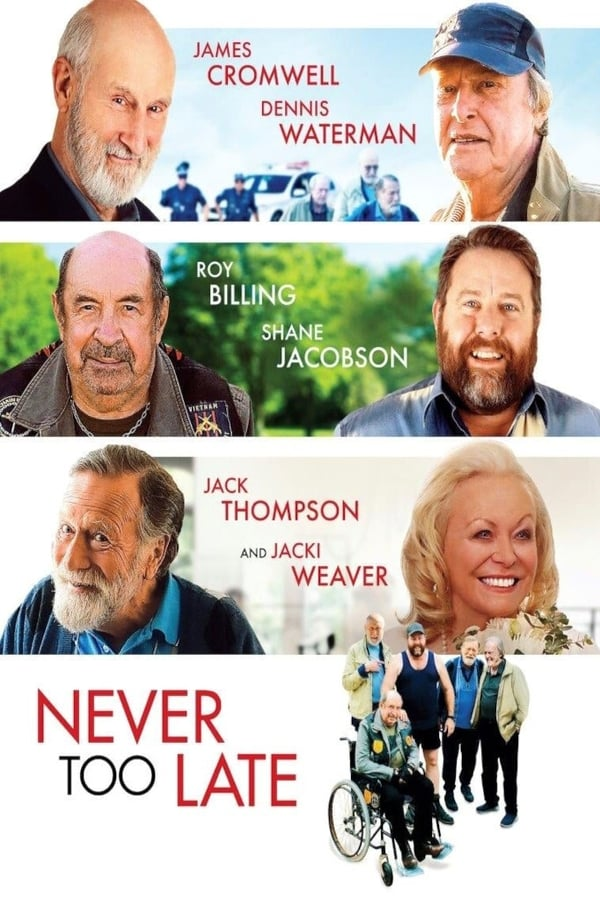 Never Too Late | 2020 | English | 1080p | 720p | WebRip