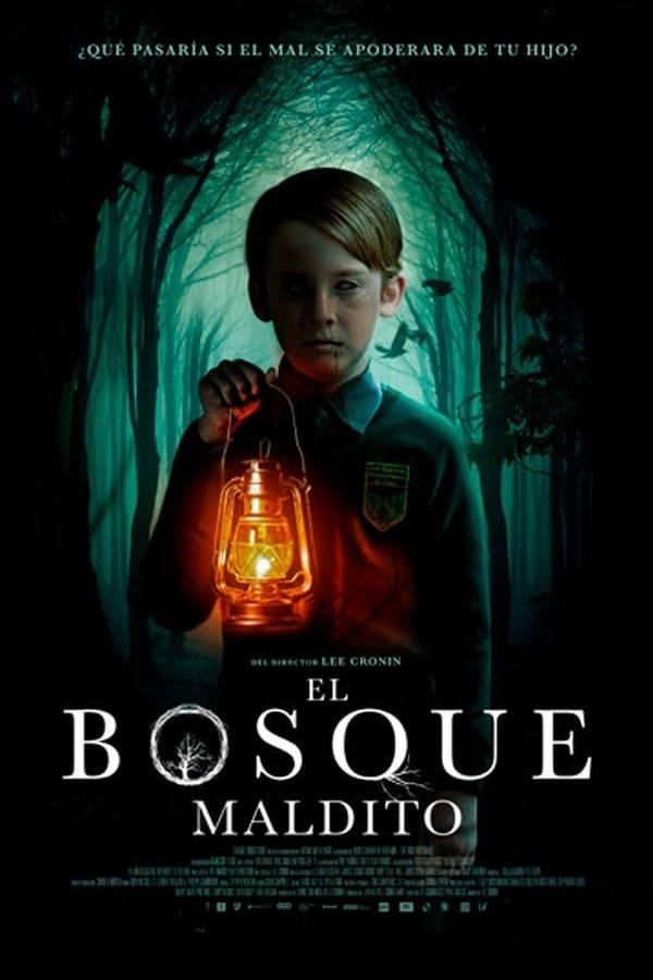 Imagen El Bosque Maldito