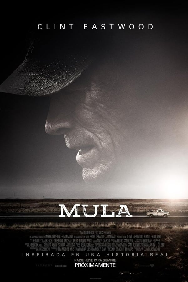 Mula ()