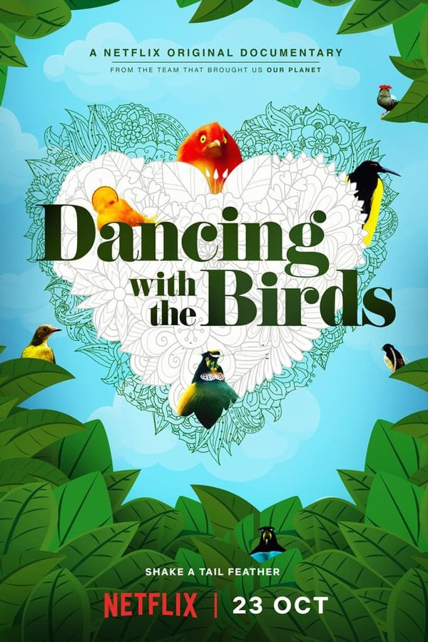 |EN| Dancing with the Birds (AUDIO)