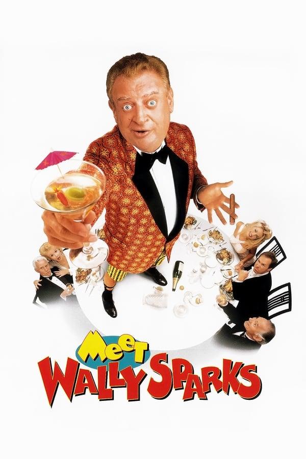 გაიცანი უოლი სპარქსი / Meet Wally Sparks