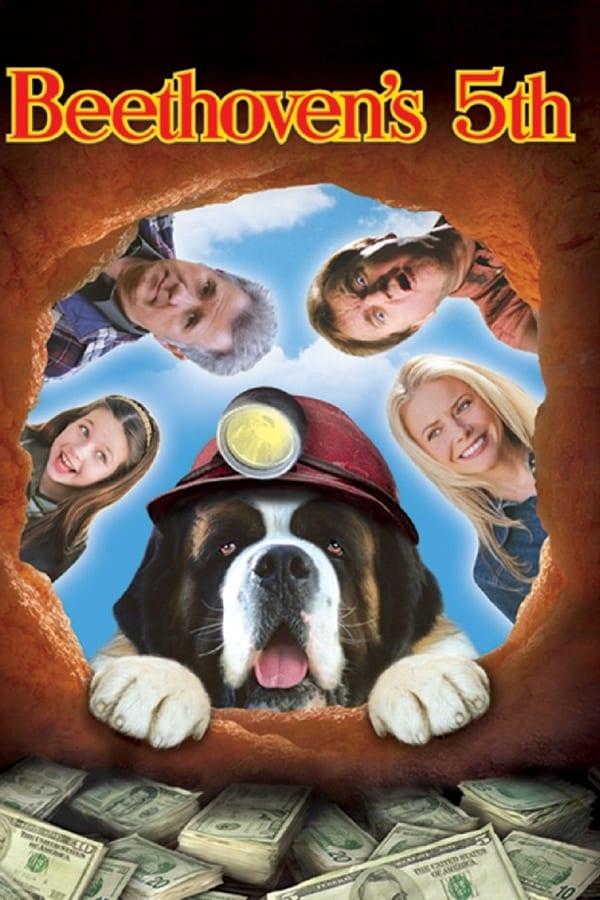 Beethoven 5: El perro buscatesoros