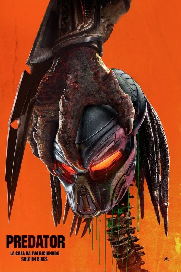 Imagen Predator