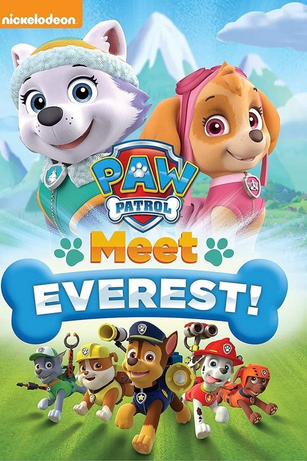 Imagen La patrulla canina: Conoce a Everest