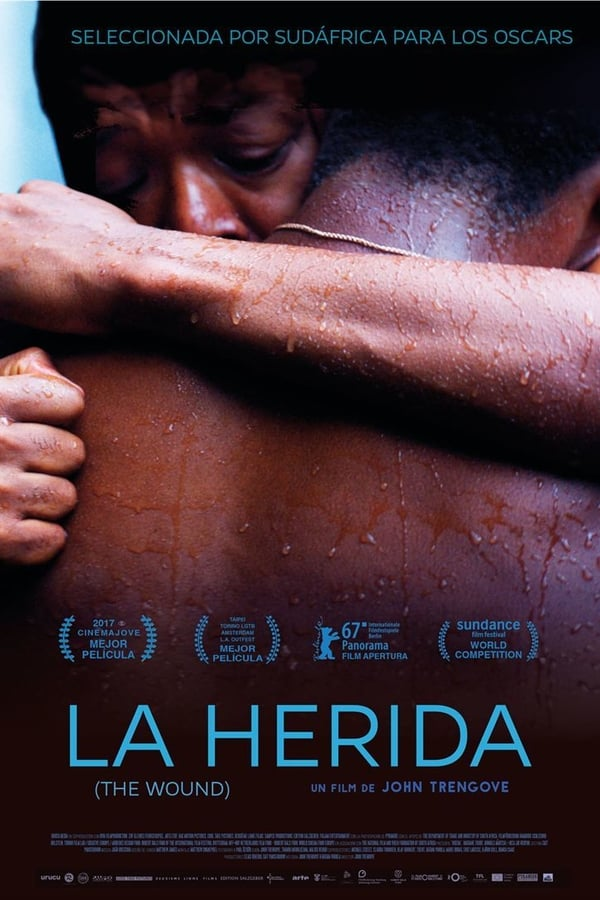 La herida (The Wound) ()