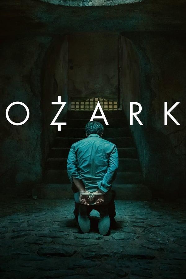 ოზარკი სეზონი 3 / Ozark Season 3 ქართულად