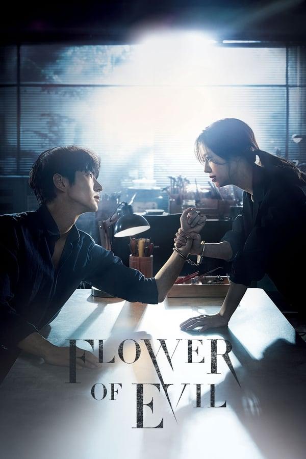 Flower of Evil Season 1 Complete