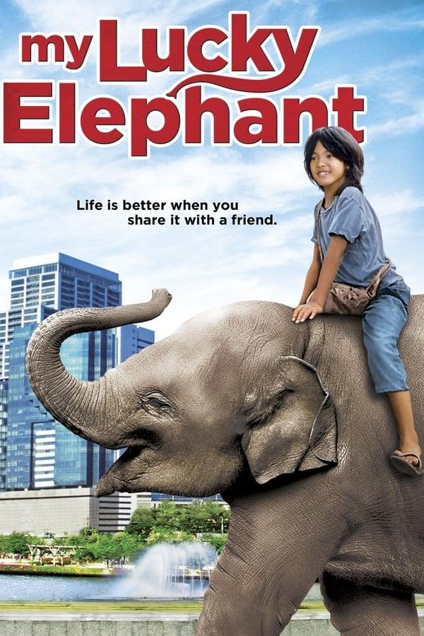 |FR| My Lucky Elephant