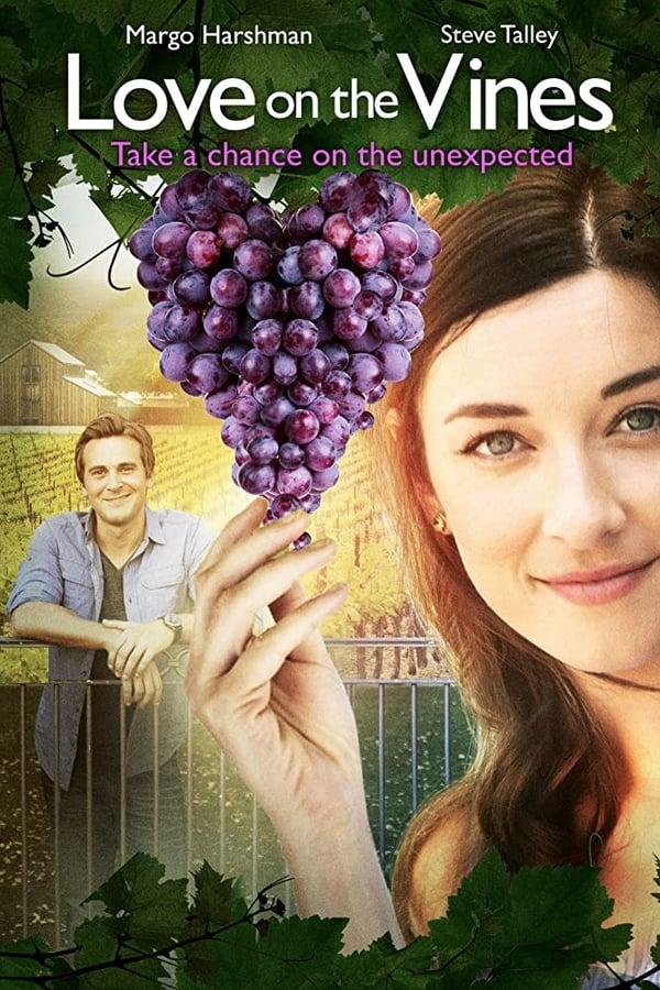 ღვინის სიყვარული / Love on the Vines ქართულად