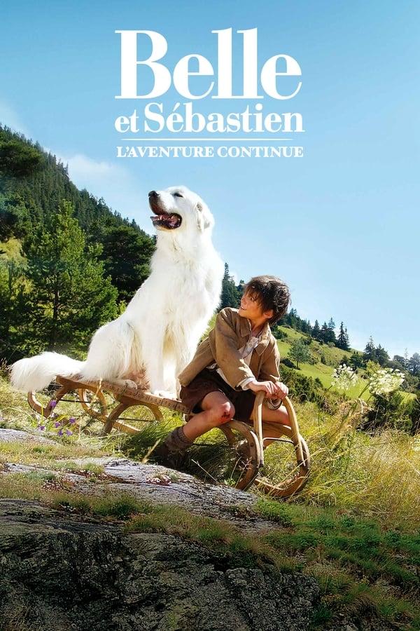 Baixar Belle e Sebástian: A Aventura Continua (2017) Dublado via Torrent