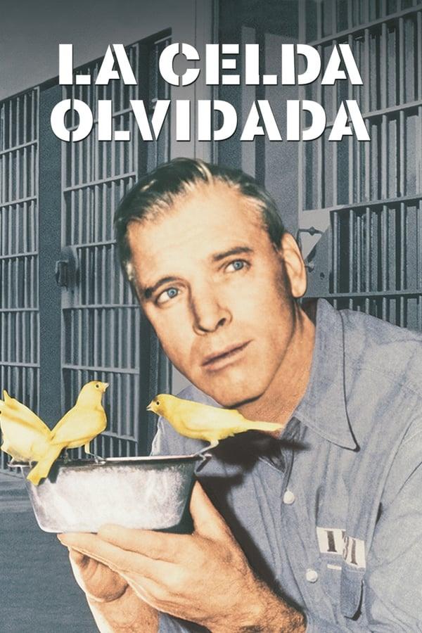16u Bd 1080p El Hombre De Alcatraz Español Película Subtitulado 4j6skhbqqk