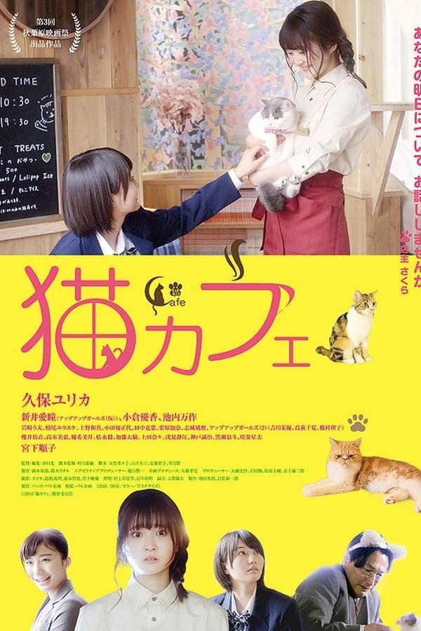 Imagen Cat Cafe
