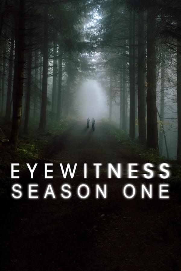 Liudininkai (1 sezonas)