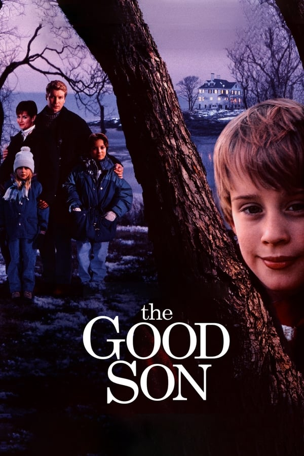 The Good Son (1993) HD 1080p Latino – CMHDD