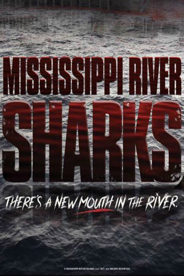 Mississippi River Sharks