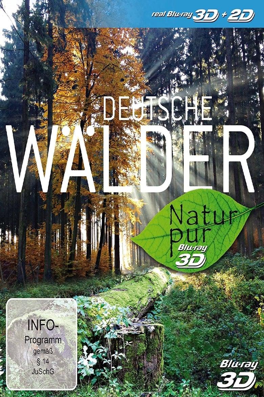 Natur pur - Deutsche Wälder