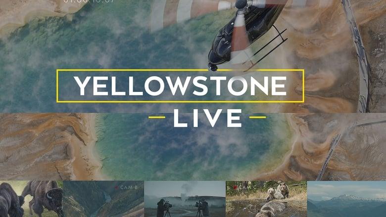Yellowstone Live (2018)