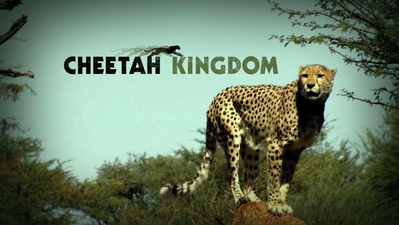 Cheetah Kingdom (2010)