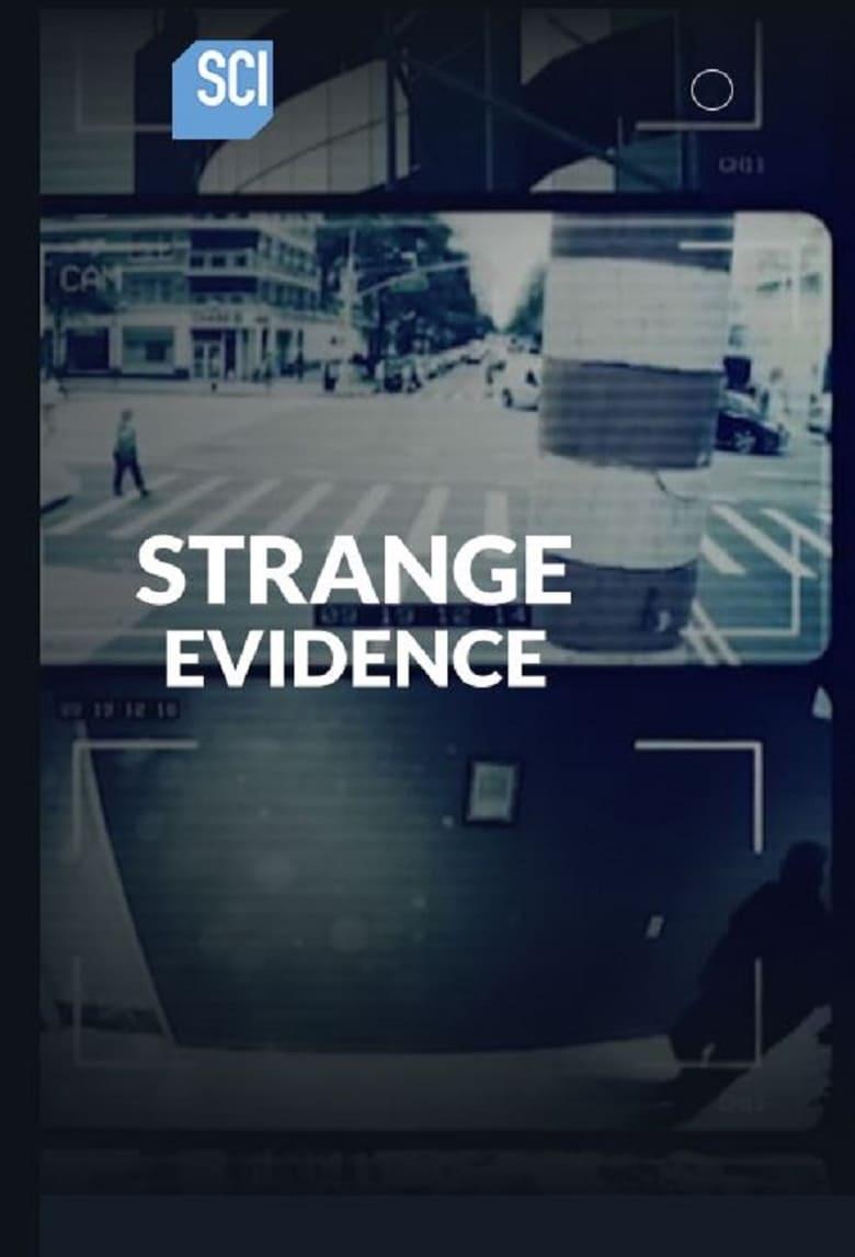 Strange Evidence (2019)