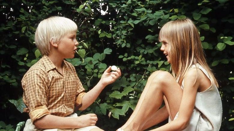 Den vita stenen (1973)