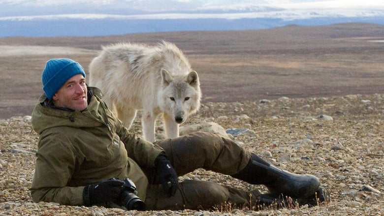Snow Wolf Family and Me (2014)