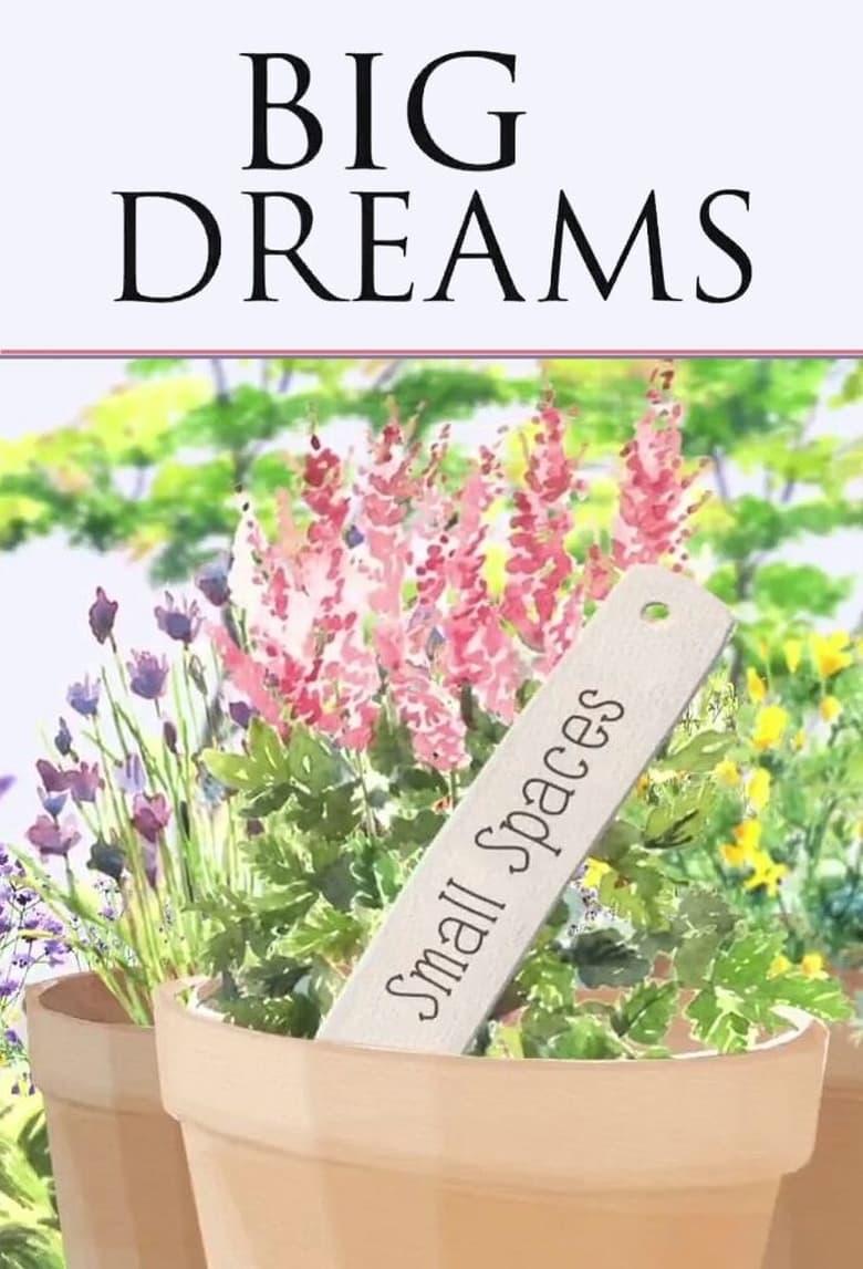 BIG DREAMS Small Spaces (2014)