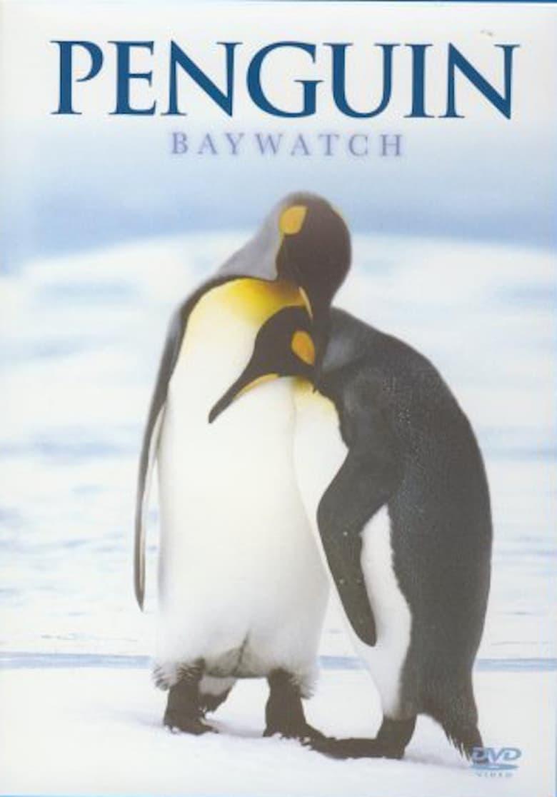 Penguin Baywatch Antarctica