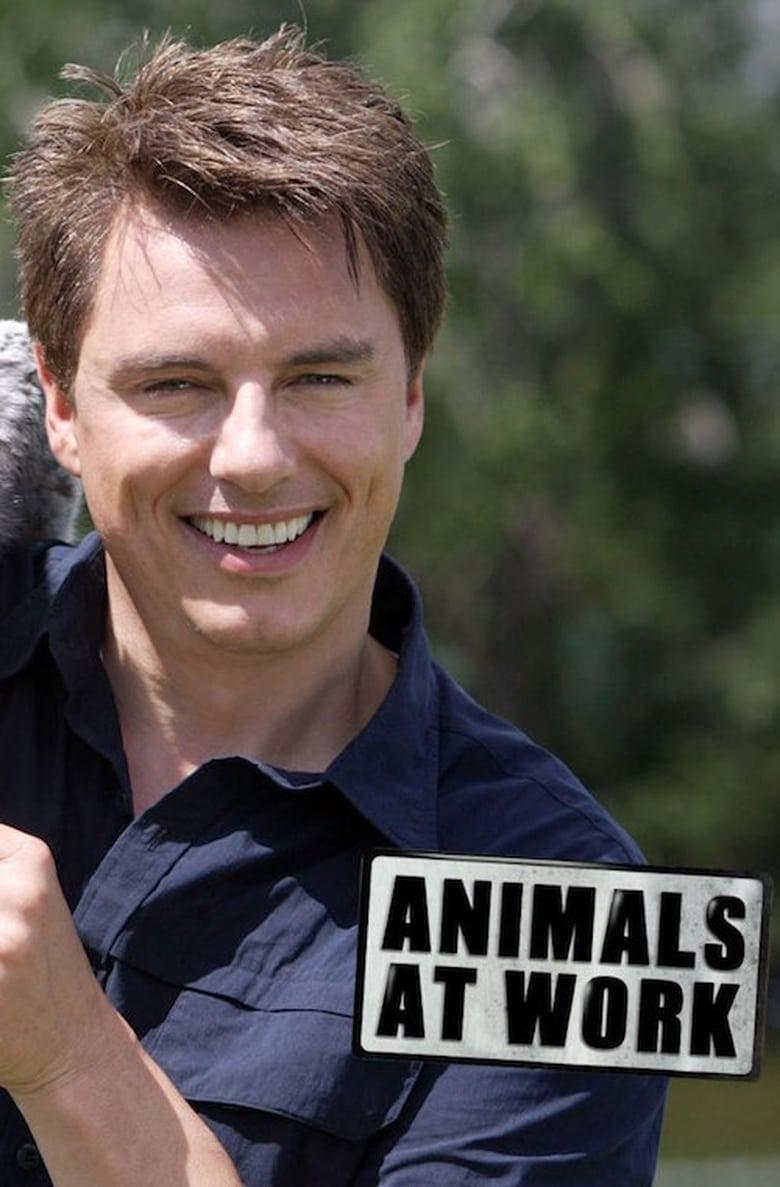 Animals at Work (2009)