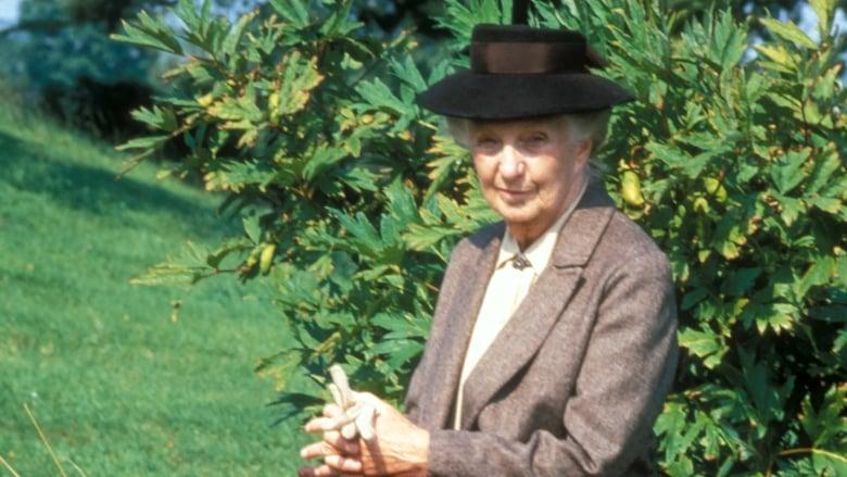 Miss Marple: A Murder Is Announced (1985)