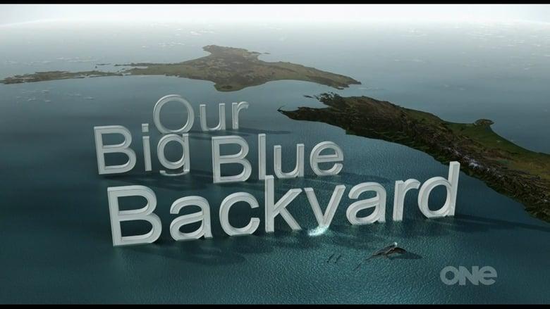 Our Big Blue Backyard (2014)