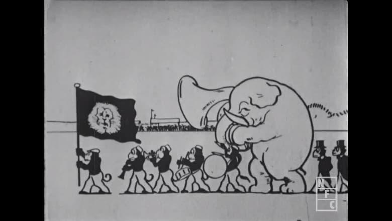 The Animal Olympics