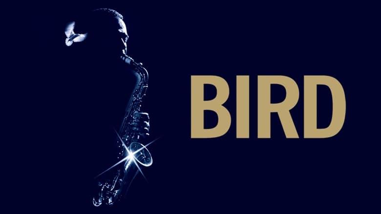 Voir Bird en streaming vf gratuit sur StreamizSeries.com site special Films streaming